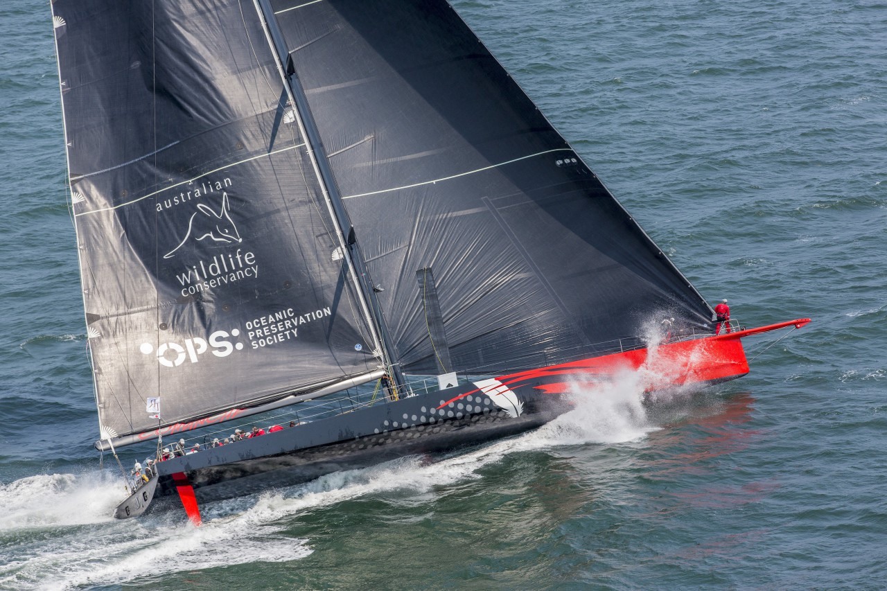 Jim Clark and Kristy Hinze Clark's 100ft Comanche at the start of the Transatlantic Race 2015. Photo: Daniel Forster